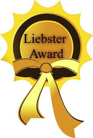 Liebster Blog Awards (4)