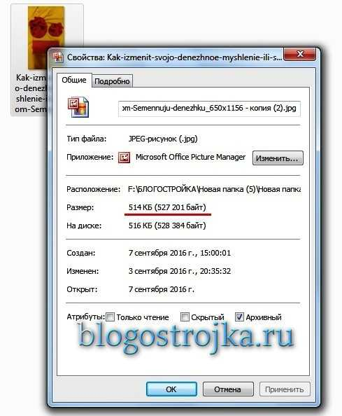 kak-obrabotat-kartinki-pered-zagruzkoj-na-blog-s-pomoshhyu-microsoft-office-picture-manager-6