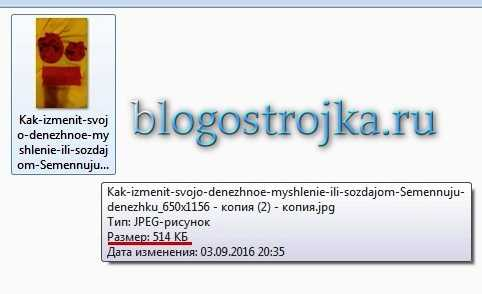 kak-obrabotat-kartinki-pered-zagruzkoj-na-blog-s-pomoshhyu-microsoft-office-picture-manager-7